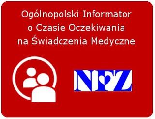NFZ mini 01.jpeg