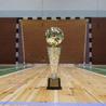 Galeria Turniej halowy o Puchar Starosty Głubczyckiego